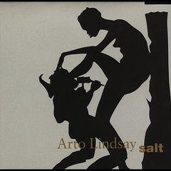 Arto Lindsay - Salt