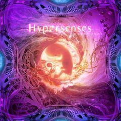 Various Artists - Hypersenses