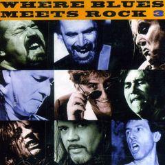 VARIOUS ARTISTS - Where Blues Meets Rock, Vol. 3