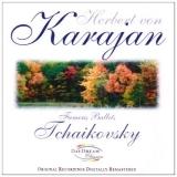 Tchaikovsky - Famous Ballets