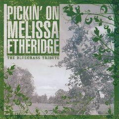 Pickin' On - Pickin' on Melissa Etheridge: A Bluegrass Tribute