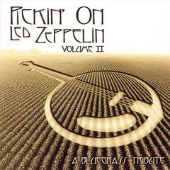 Pickin' On - Pickin' on Led Zeppelin, Vol. 2