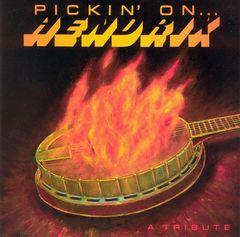Pickin' On - Pickin' on Hendrix
