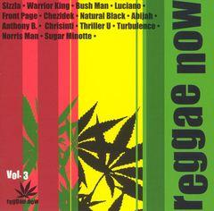 VARIOUS ARTISTS - Reggae Now, Vol. 3