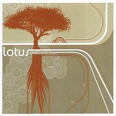 Lotus - Germination
