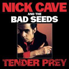 Nick Cave - Tender Prey