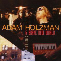 Adam Holzman - Big Picture