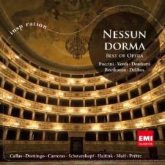 VARIOUS ARTISTS - Nessun Dorma: Best of Opera