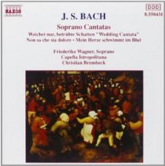 Bach, J.S. - Soprana Cantatas