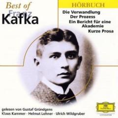 Audiobook - Best Of Franz Kafka