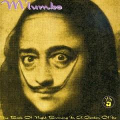 M'lumbo - Book Of Night Burning In