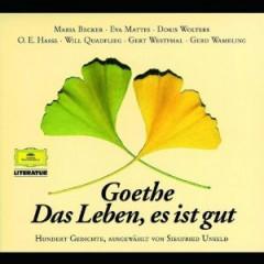 Audiobook - Goethe, Das Leben, Es..