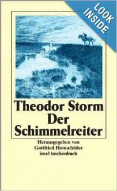 Audiobook - Der Schimmelreiter