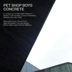 Pet Shop Boys - Concrete In Concert At Th