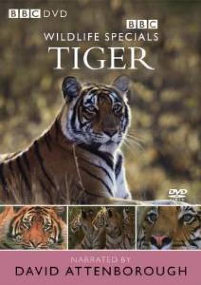 Documentary - Wildlife Special: Tiger