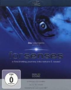 Blu:Elements - Forsenses