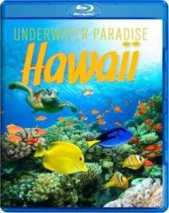 Special Interest - Underwater Paradise..