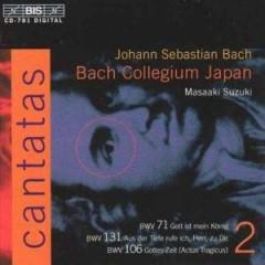 Bach, J.S. - Cantates Vol.2