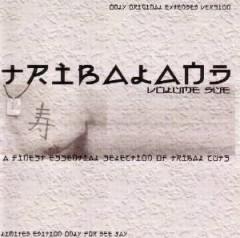 V/A - Tribaland Vol.2