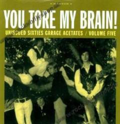 VARIOUS ARTISTS - You Tore My Brain Sixties Garage Acetates, Vol. 5