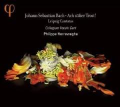 Bach, J.S. - Ach Susser Trost