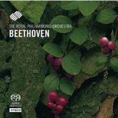 Beethoven, L. Van - Symphonies 2 & 8