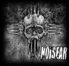 Noisear & Department Of C - Split