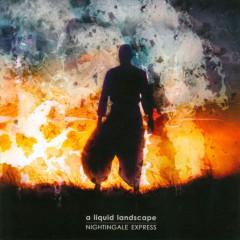 Liquid Landscape - Nightingale Express