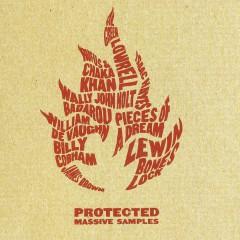 V/A - Protected: Massive Sample
