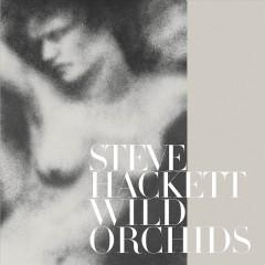 Hackett, Steve - Wild Orchids