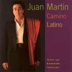 Martin, Juan - Camino Latino