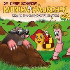 Audiobook - Die Kleine Schnecke 22