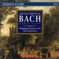 Bach, J.S. - Brandenburg Conc.4 5+6
