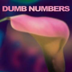 Dumb Numbers - Dumb Numbers