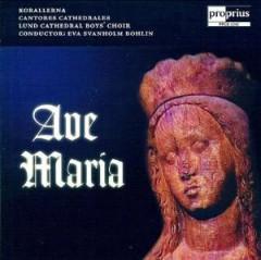 Garrett, David - Ave Maria