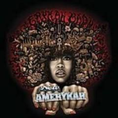 Badu, Erykah - New Amerykah 1