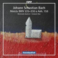Bach, J.S. - Motets Bwv225 230