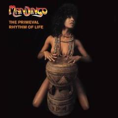 Mandingo - PRIMEVAL RHYTHM OF LIFE