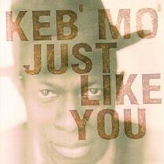 Keb'mo - Just Like You