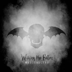 Avenged Sevenfold - Waking The..  Cd+Dvd