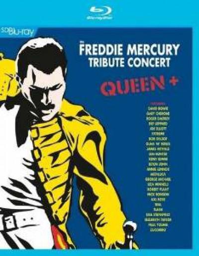 Queen - Freddie Mercury Tribute..