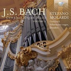Bach, J.S. - Complete Organ Music V.2