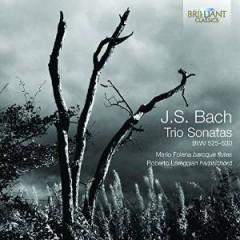 Bach, J. S. - TRIO SONATAS BWV 525-530