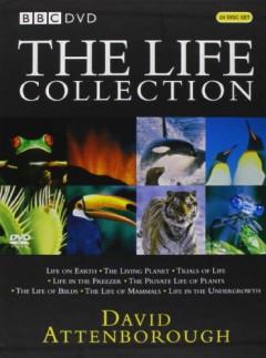 Documentary/Bbc - Attenborough Boxset