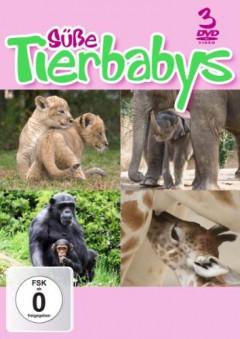 Special Interest - Susse Tierbabys