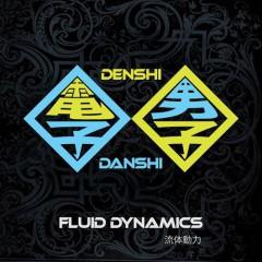 DENSHI-DENSHI - FLUID DYNAMICS