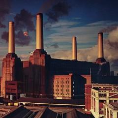 Pink Floyd - ANIMALS -HQ-