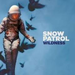Snow Patrol - WILDNESS-HARDCOVER BOOK