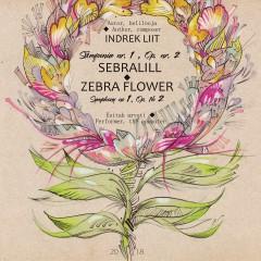 "Indrek Liit - Sümfoonia nr. 1 "" Sebralill"". Symphony nr.1 "" Zebra Flower"""
