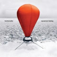 Trentemoller - 7 Sycamore Feeling